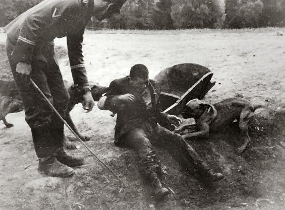 Jew Detector: Nazi-attack-dog