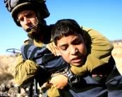 http://desertpeace.files.wordpress.com/2012/08/child1.jpeg?resize=173%2C138