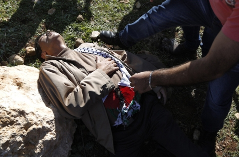Ziad Abu Ein reportedly inhaled large amounts of tear gas and was assaulted by Israeli forces [AFP/Getty Images]