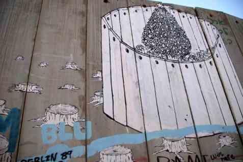 Bethlehem; The tree on the wall