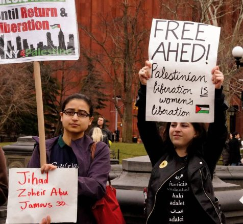 International Solidarity | Desertpeace